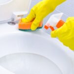 Best Toilet Bowl Cleaners